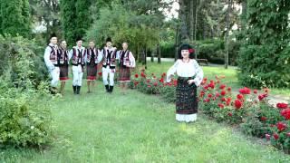 Nina CUCIUC - Viata la tara (muz. C-tin Bardan, versuri Viorel Vasuta)