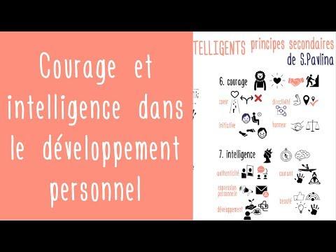 Courage et intelligence : le développement personnel pour les gens intelligents de Steve Pavlina