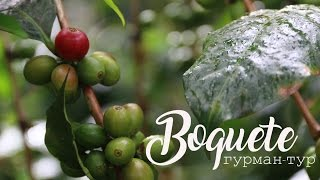 Boquete Coffee Farm - Бокете, Кавова Ферма