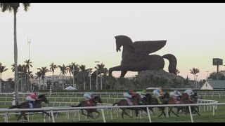 Off to the Races: Gulfstream Park in Hallandale Beach