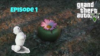 GTA 5 Peyote Plants Episode 1: I'm a poodle! (+ location)