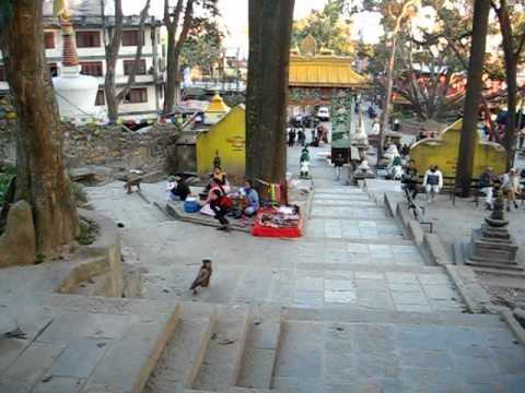 Swayabunath Monkey Temple.AVI