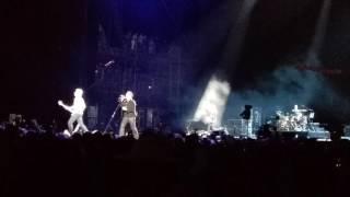 U2 - New Year's Day (at Bonnaroo)