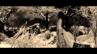 Can't Stop What's Coming - Amy Lee (Music Video)