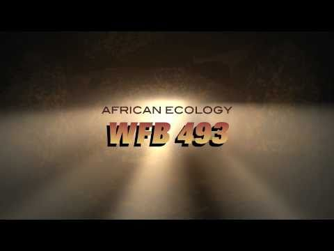 African Ecology – Trailer