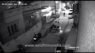 Womens' safety in India: Bengaluru molestation CCTV recording