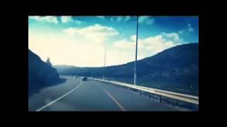 Road to palestine