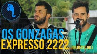 Os Gonzagas - Expresso 2222 (Gilberto Gil) | ELEFANTE SESSIONS