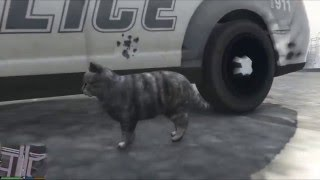 "GTA 5 ""FUCK THE POLICE CAT"""