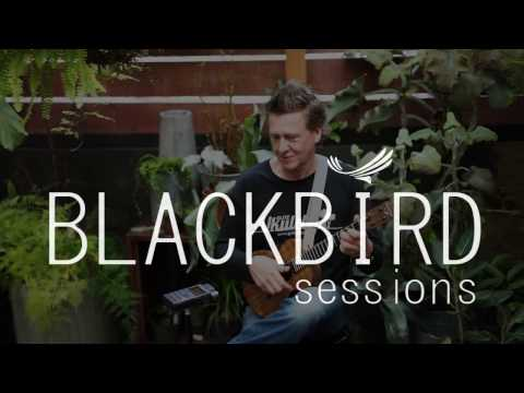Blackbird Sessions featuring Andreas David- The Tall Fiddler