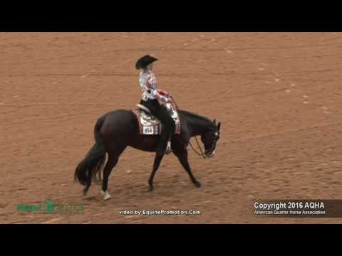 A Judges Perspective: 2016 Select Western Riding World Champion