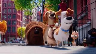 Pets   A Vida Secreta dos Bichos   Trailer Oficial 3 Dublado