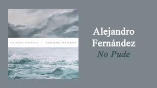Alejandro Fernández - No Pude | Letra