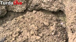 Alunecările de teren de la Turda se pot agrava în primăvară