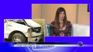 José Ávila explica la importancia de tener asegurados sus autos