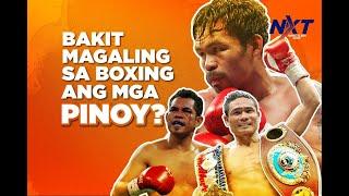 Bakit sadyang magaling sa boxing si Pacquiao at ang lahing Pilipino? | NXT