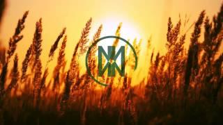 Adam Sobiech feat. Ai Takekawa - Break The Light (Nihilum Remix)
