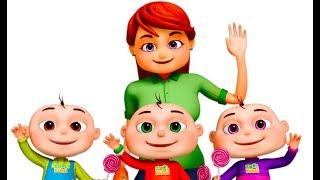 Feeling Song 2 (Single) | Five Little Babies | Zool Babies Fun Songs | Nursery Rhymes & Kids Songs