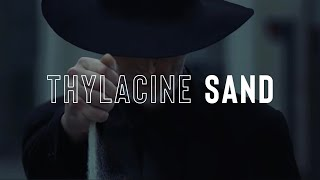 Thylacine - Sand (Official Music Video)