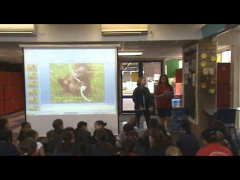 Silverton Primary School DeforestACTION 2