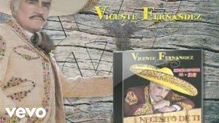 Vicente Fernández - Gracias (Audio)