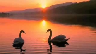 平衡 - Balance - Chinese Meditation