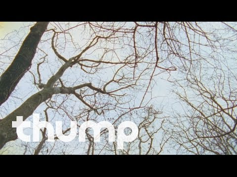 erol-alkan-a-hold-on-love-official-music-video-thump