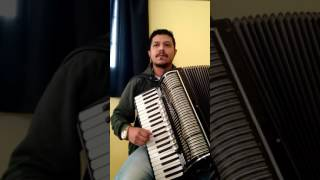 Fabinho Pontes - Despacito na Sanfona/Gaita/Acordeon Cover Luis Fonsi