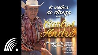 Foi Por Amar Demais Que Eu Chorei - Carlos André - O Melhor do Brega