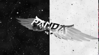 Intro Panda Prodution