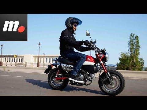 Honda Monkey 125 | Presentación / Primera Prueba / Test / Review en español