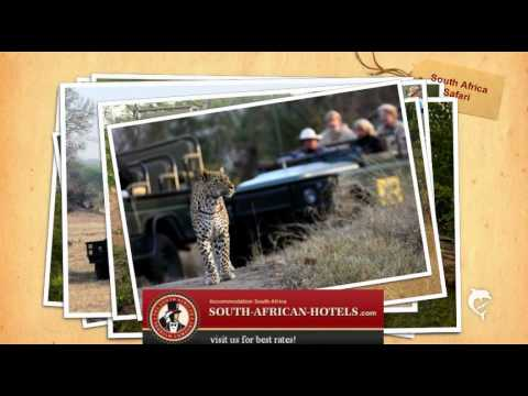 Safari South Africa