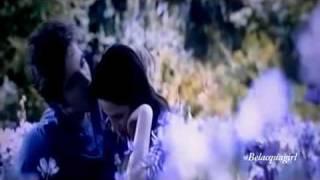 Bella & Edward - Because of You