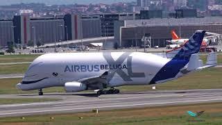 Landing Airbus Beluga XL maiden flight