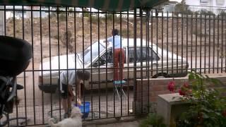 reggaeton lavado de auto