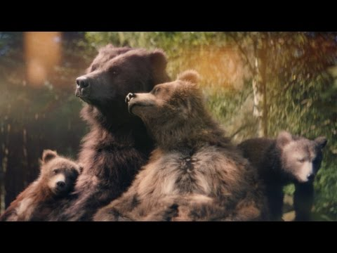 Center Parcs TV Advert 2015 – Bears