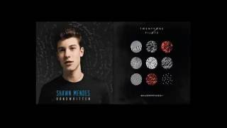 Shawn Mendes vs Twenty One Pilots- Stitched Ride (MASHUP)