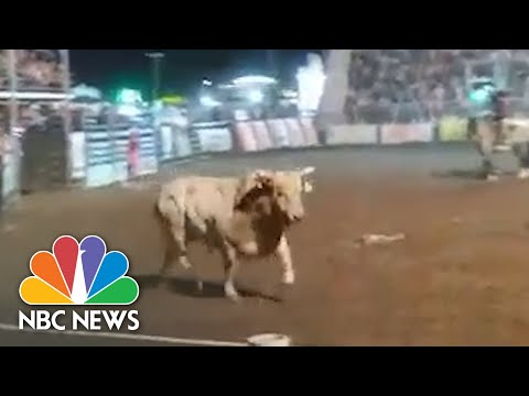 Watch: Terrifying Moment Bull Charges Audience In Idaho