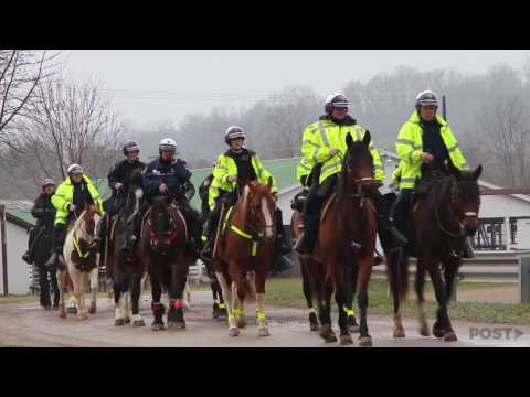 We followed the mounted police as they patrolled 2017's Mill Fest in Athens.   Read the full story: http://www.thepostathens.com/article/2017/03/horse-cops-fest-season  Video by Patrick Connolly, Alisa Martinez and Alex Penrose
