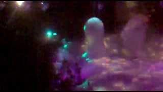 fiesta de la espuma 4 / 3 / 2011 -TROPITANGO.