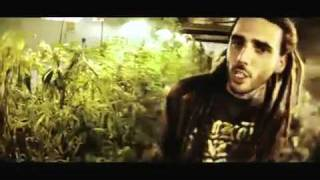 Swan Fyahbwoy - Fuma weed (Videoclip).mp4