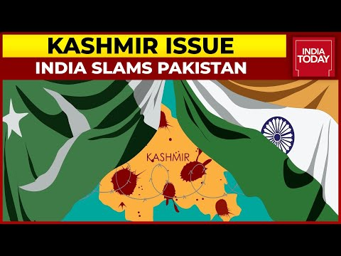 Kashmir Issue: India Slams Pakistan For Using UN Platform To Spew Hate | Breaking News