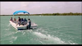 Nirvana Blue Yucatan
