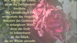 Lyrik - Raymond Hummy Art - Wolfgang Amadeus Mozart Klavierkonzert Nr. 21 Andante