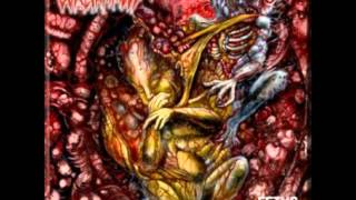 Catatonia (Suffocation Cover) - Goreinhaled