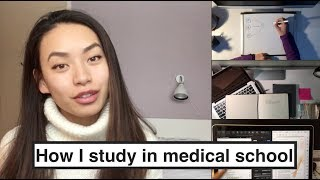 Study Routine in Medical School width=
