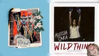 Strangers x Wild Things - Halsey & Alessia Cara Mashup