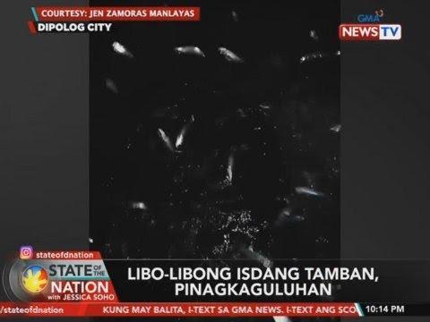 "Image result for isdang tamban dipolog"""