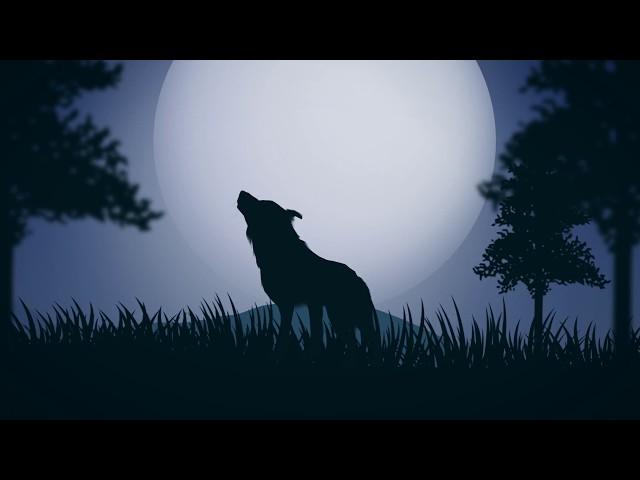 """Vídeo de """"Lobos"""" de Alba Messa."""