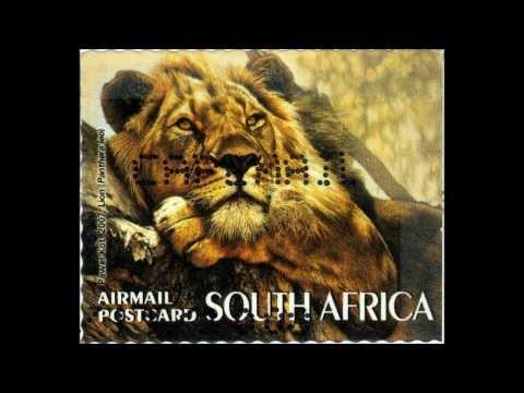 Natural Migrations South Africa Safari